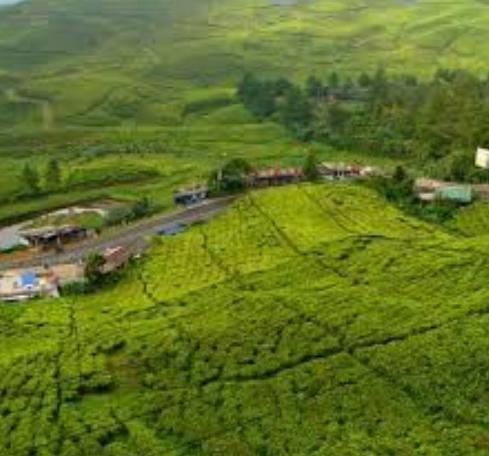 23 Tempat Wisata Di Puncak Bogor Dan Sekitarnya Untuk Dikunjungi