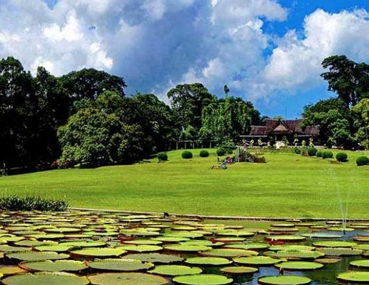 Harga Tiket Masuk Kebun Raya Bogor
