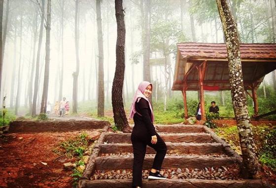 Objek Wisata Seru Puncak Becici Dlingo Bantul Yogyakarta