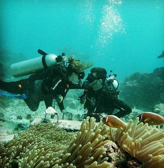 Alamat Dan Harga Tiket Masuk Pantai Drini Yogyakarta