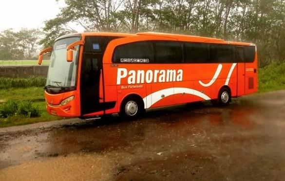 Harga Sewa Bus Panorama
