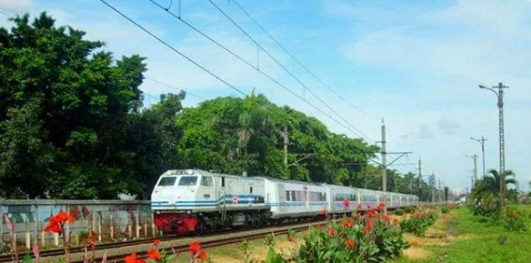 Jadwal Dan Harga Tiket Kereta Api Argo Bromo Anggrek
