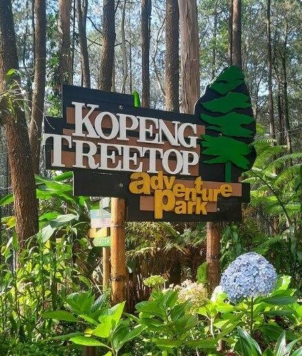 Kopeng Treetop Adventure Park, Bermain Wahana Menantang Di Semarang