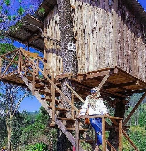 Pacet Hill Outdoor Park Mojokerto, Info Lokasi Dan Harga Tiket Masuk