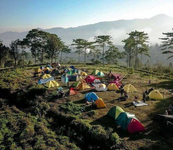 Camping Gayatri Citeko Bogor - Review Lokasi dan Harga Tiket Masuk