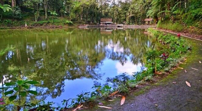 Rawa Bayu Banyuwangi - Review Lokasi dan Harga Tiket Masuk